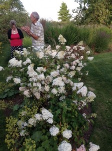 Bob Hare gave us gardening tips at NGS garden Rose Cottage July 2014